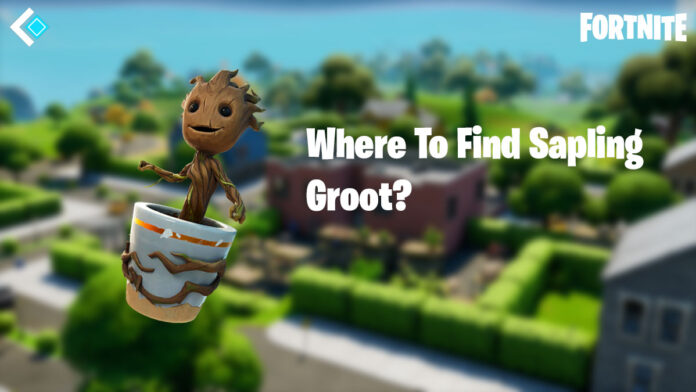 Fortnite Sapling Groot Location