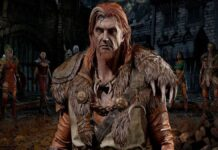 Best Druid Builds in Diablo 2: Resurrected